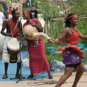 Ритмы и мелодии Африки