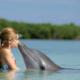 «Девочка и дельфин» Э.Артемьев (плюс, минус, слова)