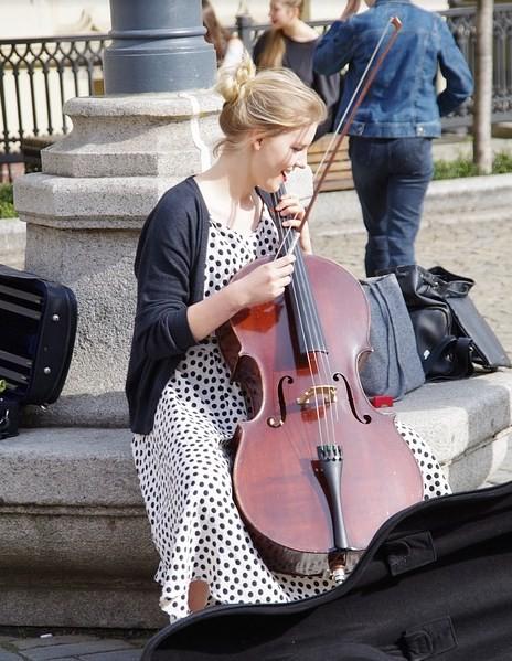 Кратко о виолончели