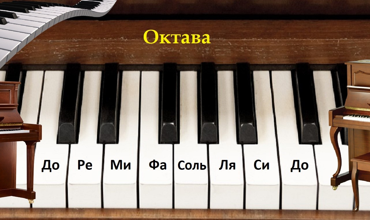Как организована клавиатура клавишных инструментов